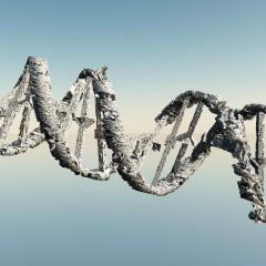 Duhani dëmton përgjithmonë ADN-në
